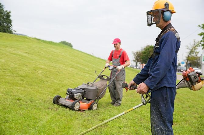 Lawn Care Workers